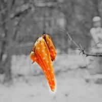 Народная игрушка 19-20 в.на территории музея славянской культуры. :: Татьяна Помогалова