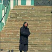 Слепая старушка кормит голубей.... :: Елена Швецова