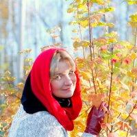 Осенние прогулки в Домодедово. :: Виктория Шейгас