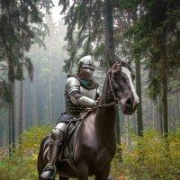 Рыцарь на коне :: Софья Ознобихина