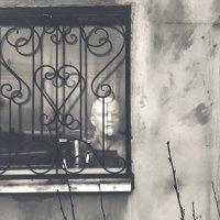 Уфа (Взгляд из окна) :: Георгий Морозов