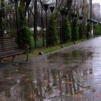 Дождливая тема ) :: Людмила