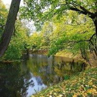 Парк Южный в октябре :: Маргарита Батырева