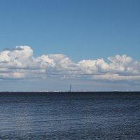 Финский залив :: Олег Денисов
