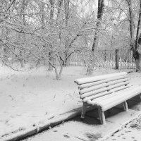 Зима  пришла..... :: Юлия Закопайло