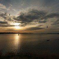 Вечер в севастопольской бухте :: Виктор Мороз