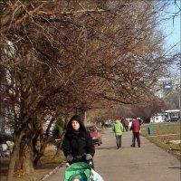 Тепло и солнечно в ноябре :: Нина Корешкова