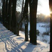 зимний день :: Дмитрий Солоненко