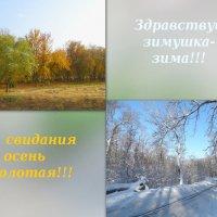 С первым днём зимы друзья!!! :: Тамара (st.tamara)
