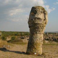 Голова первобытного человека :: максим лыков