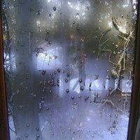 Предрождественское окно - 3 :: Марина Домосилецкая