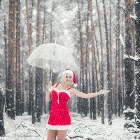 Первый снег :: Olga Schejko