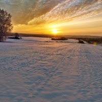Утро зимы :: Николай Мальцев
