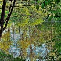Весна... :: Sergey Gordoff