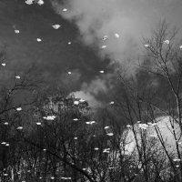 Осенний эфир :: Константин Фролов
