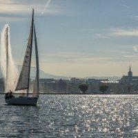 two sails :: Dmitry Ozersky