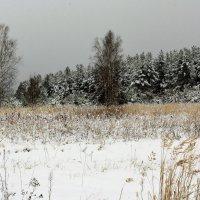 Пришёл декабрь :: Николай Масляев