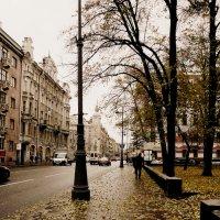 Ещё осень :: Galina Belugina