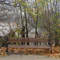 Скамейка в парке :: Александр Рыжов