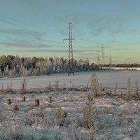 Зима на Ямале. :: Леонид Балатский