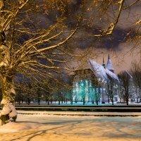 в зимнем наряде :: Владимир Князев