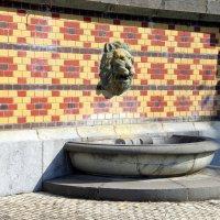 Львиная маска (маскарона) на подпорной стене Массандровского дворца :: Валерий Новиков