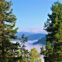 Утром в долине туман :: Сергей Чиняев