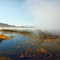 Утром на Кубене реке... :: Александр Никитинский