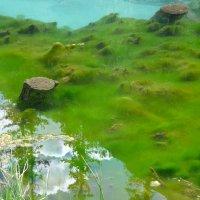 Озеро-гейзер :: Стил Франс