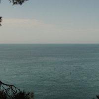 Море :: Алексей Коробов