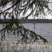 Святое озеро Дымское , камень и крест св. Антония Дымского. :: Ольга Лиманская