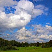 Парк, небо, провода :: Alexander Andronik