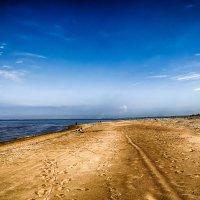 Питер Большая Ижора пляж дикий слева Кронштадт виден :: Юрий Плеханов