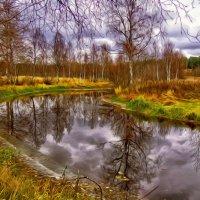 ...осень  наступила...высохли   цветы... :: Ольга Cоломатина