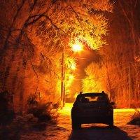 Ночной дозор ...))) :: Олег Кондрашов