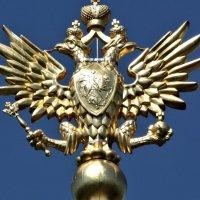 гордый символ :: Владимир Холодницкий