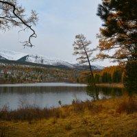 У озера  Кёк- Кёль. :: Валерий Медведев