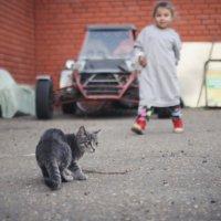 кто не спрятался, я не виновата :: Тася Тыжфотографиня