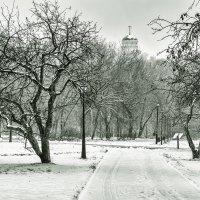 Москва. Коломенское. Декабрь. :: Игорь Герман