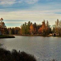 Осенней Гатчины пейзаж... :: Sergey Gordoff