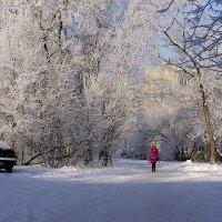 Зимнее настроение 2 :: Евгений Вяткин