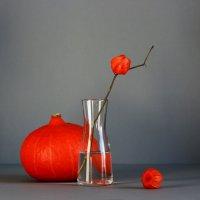 Оранжевый  мотив :: Наталья Казанцева