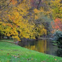 Краски Английского сада :: Николай Танаев