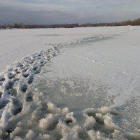 Первый лёд :: Александр Алексеев