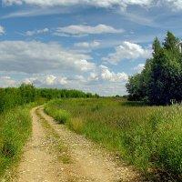 Дорога в деревню :: Oleg S