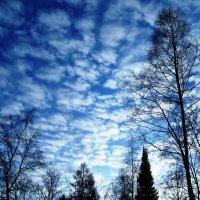 Небесный ландшафт :: Татьяна Котельникова