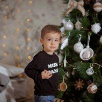 Маленький Мишаня и его новогодняя сказка :: Кристина Беляева