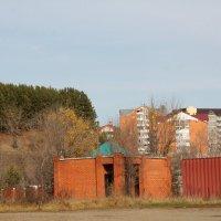 Лес и дома :: Олег Афанасьевич Сергеев