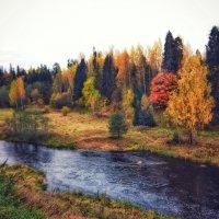 Осень у реки :: Наталья Ерёменко