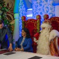 Дед Мороз ответит на вопрос любой :: Ирина Данилова